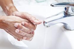 После каждого контакта с животными рекомендуется мыть руки